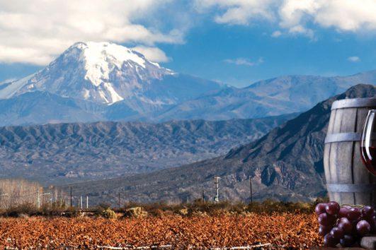 South America-Argentina-Wine Tour
