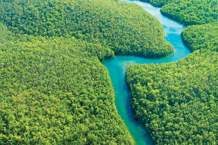 south america-brazil-amazon-river