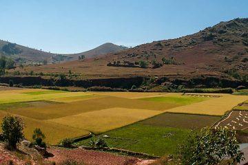 tour-africa-madagascar-countryside-rice-fields-mountains-pixabay-387672
